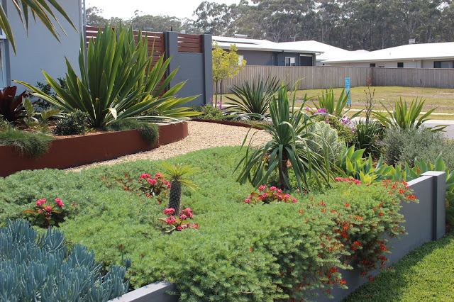 Garden of home built and occupied since Sep 2014 2nd Vanessa Wasas, 17 Red Gum Crt, North Sapphire Beach