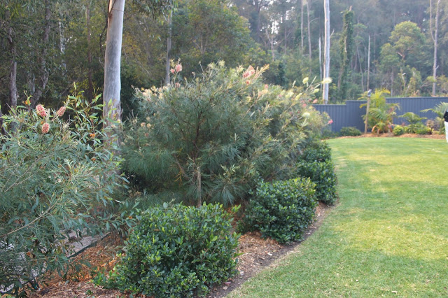 Home garden, block from 1001m2 to 4000m2 1st David & Samantha Jones, 29 Berkeley Drive, Bonville