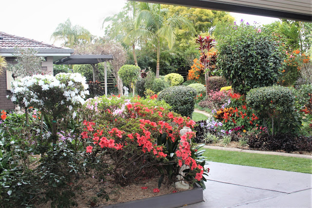 Home garden, block up to 1000m2 Highly Commended Robyn Tozer, 74 Bailey Ave, Coffs Harbour