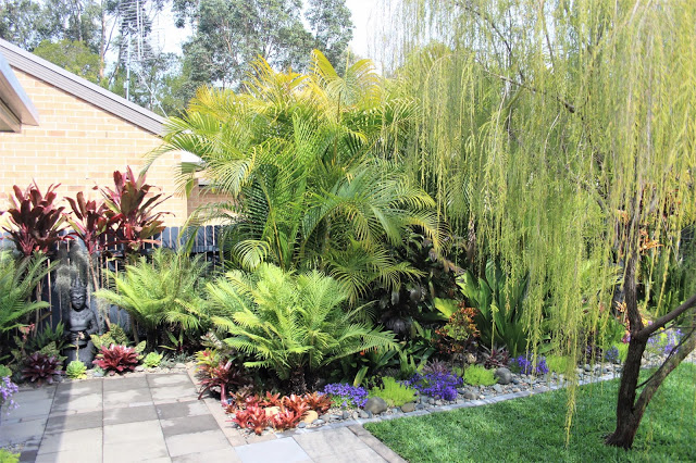 Champion Garden        Judy Luckie, 5 Sunnyside Close, Coffs Harbour